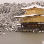 京都観光のおすすめコース【1日】で周るベストコースを超詳しく解説してみた!