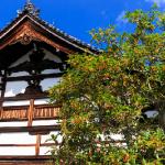 京都観光【10月はおすすめイベントでレアな清水焼をGETしよう!】