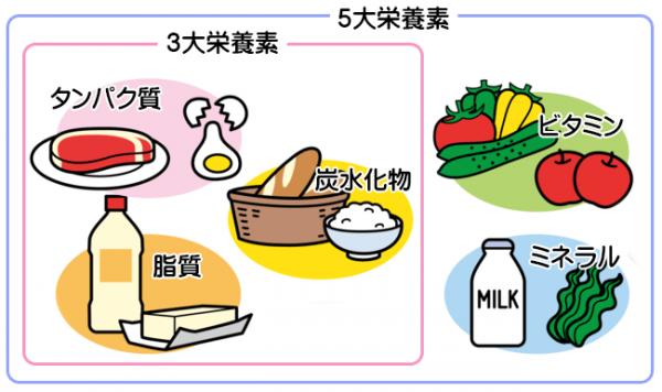 ベストボディジャパン 食事制限 メニュー