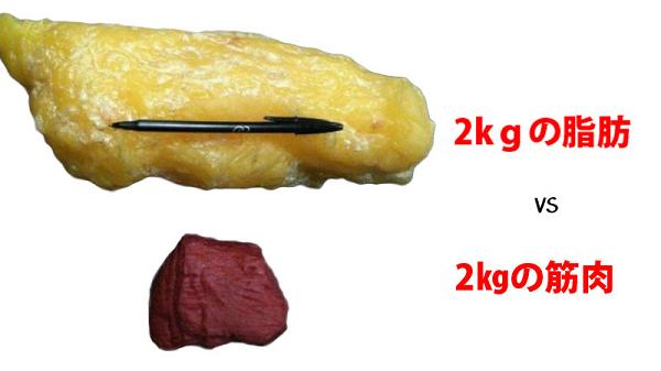 脂肪を筋肉に変える方法